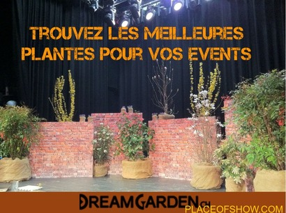 Location de plantes pour events